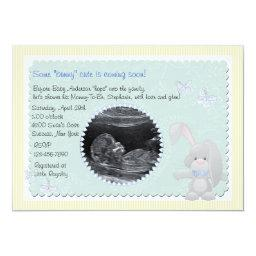 Baby Bunny Blue Photo