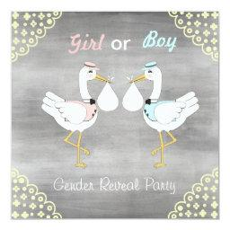 Baby Gender Reveal Shower with Storks