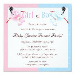 Gender Reveal Party Stork Delivering Baby