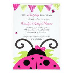 Ladybug Hot Pink Baby Shower Party