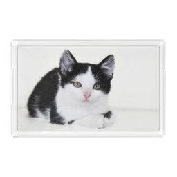 Black White Thoughtful Kitten Acrylic Serving Tray