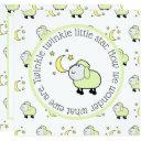 Green Lamb With Moon And Stars Gender Reveal Party Invitation