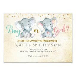 Pink or Blue Elephant gender reveal